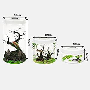 tonosevilla–Terrarium für Reptilien aus Kunststoff (S)