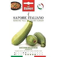 Portal Cool Sabor italiano - calabacín - boloñesa calabacín