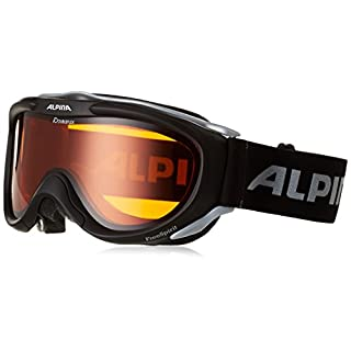 Alpina Skibrille FreeSpirit, schwarz transparent dlh (black transparent dlh), One size, A7008-131