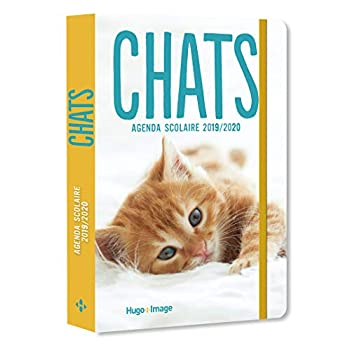 Agenda scolaire 2019-2020 Chats