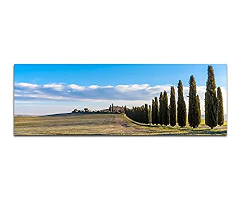 40 cm Tuscan Landscape Italian Cypress Trees Meadow Images Wall Poster Art Print
