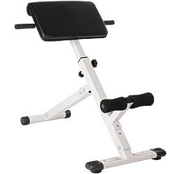 Physionics Hyperextension Rückentrainer mit Gepolsterter Beinfixierung | klappbar & verstellbar | Ergonomisch Rückenstrecker, Bauchtrainer, Trainingsbank