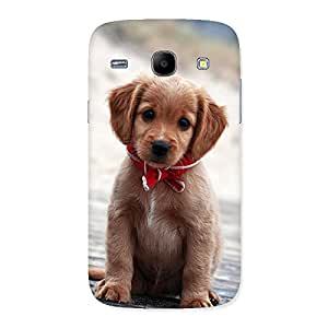 Enticing Looking Puppy Multicolor Back Case Cover for Galaxy Core