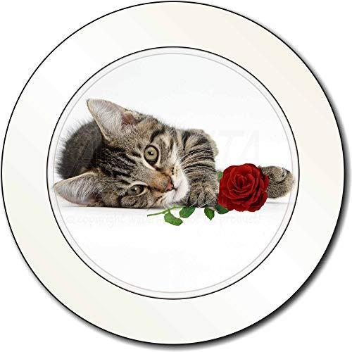 Advanta - Tax Disc Holders Tabby -Kätzchen-Katze mit roter Rose AutovignetteGenehmigungsinhaber Geschenk -
