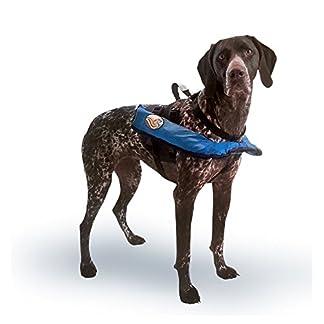 Critter's Inflatable Lifejacket (Small) 41w3Viwq34L