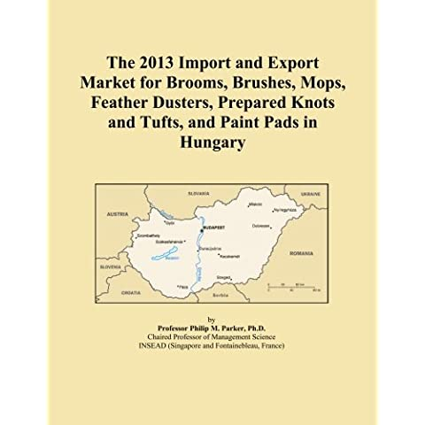 The 2013 Import and Export Market for Brooms, Brushes, Mops, Feather Dusters, Prepared Knots and Tufts, and Paint Pads in Hungary