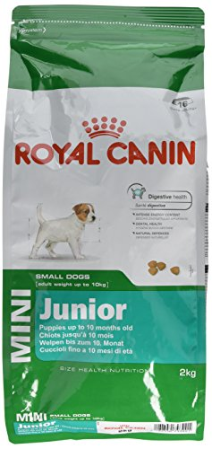Royal Canin Mini Junior 33 Hundefutter, 2 kg, 1er Pack (1 x 2 kg)