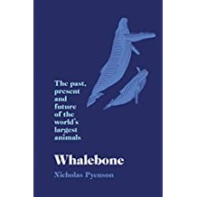 Whalebone