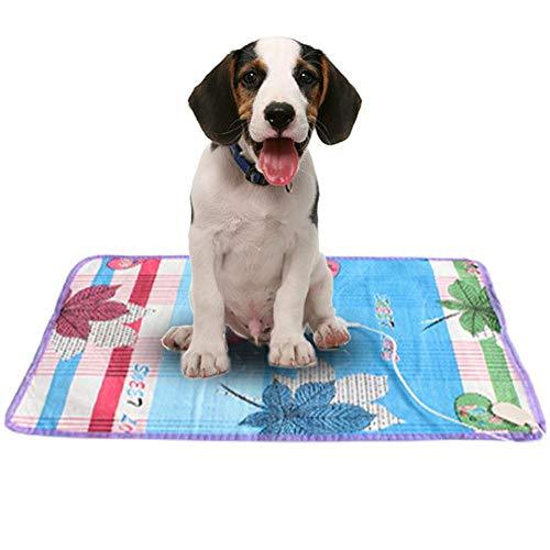 Heizmatte Haustiere Wasserdicht Heizkissen Umweltfreundliche Sicherheit Haustier Heizdecke Wärmematte Für 4 Jahreszeiten Geeignet Für Katzen Hunde Kaninchen Usw, 50x70cm - Dual-heizdecke