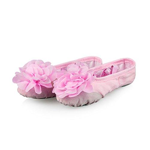 O&N Balletschläppchen Ballettschuhe Schläppchen Turnschläppchen Tanzschuhe mit Blume Design für Kinder Rosa