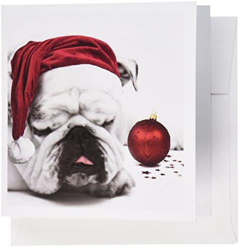 3Drosa GC 62826 _ 2 6 x x x 15,2 cm Sleeping Bulldog in un cappello da Babbo Natale foto di cortesia di Esther Matheus  Auguri (confezione da 12) | riparazione  | Lussureggiante In Design  | Cliente Al Primo  d71039