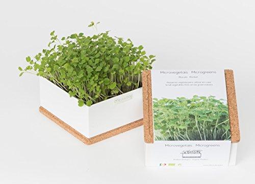 Grow Box uno Bio - Kit prêt à pousser Bio Microgreens - Superbe idée cadeau, original et décoratif - Boîte metal et couvercle liège 11x11x5 cm (Roquette)