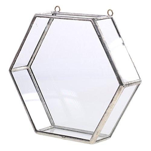 MagiDeal Glas geometrische Terrarium Box Sukkulent Pflanze Pflanzer Wand Dekor - Silber