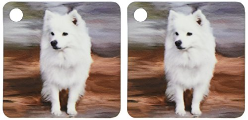 3drose American Eskimo Spielzeug Hund–Schlüssel Ketten, 5,7x 11,4cm, Set 2Stück (KC _ 4178_ 1)