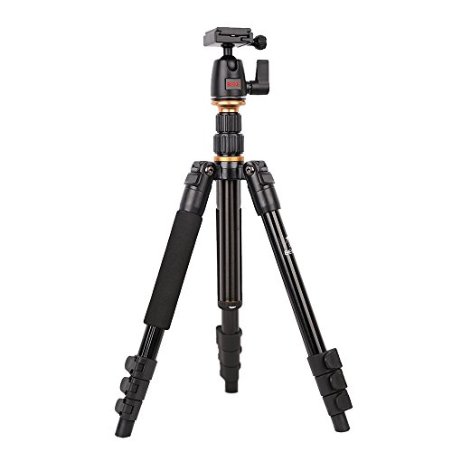 Beike BK-555 Trípode para cámara...