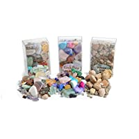 Fossil, Rock and Gemstone Box Collection. Set of 3 Boxes