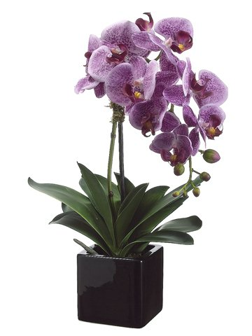 20-violet-artificial-phalaenopsis-orchid-plant