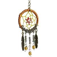 Pixnor pendenti piume turchese acchiappasogni pendente anello portachiavi