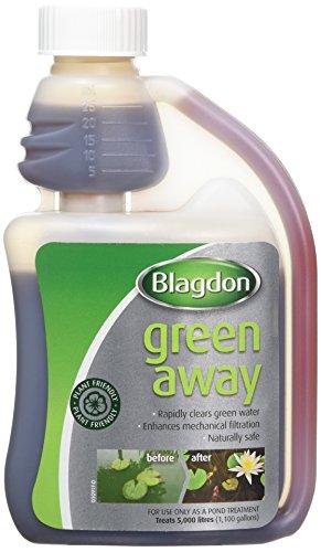 Newsbenessere.com 41w9S2CA2rL Blagdon verde away–250ml