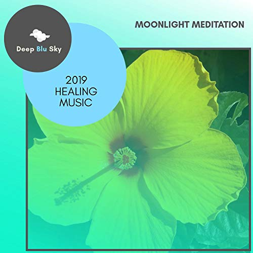 Moonlight Meditation - 2019 He...