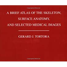A Brief Atlas of the Human Skeleton, Surface Anatomy and Selected Medical Images