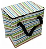 Multicolour Insulated Stripe Cool Bag