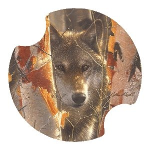 Birch Wolf Carsters - Coasters for Your Car by Thirstystone Carster Car Coaster