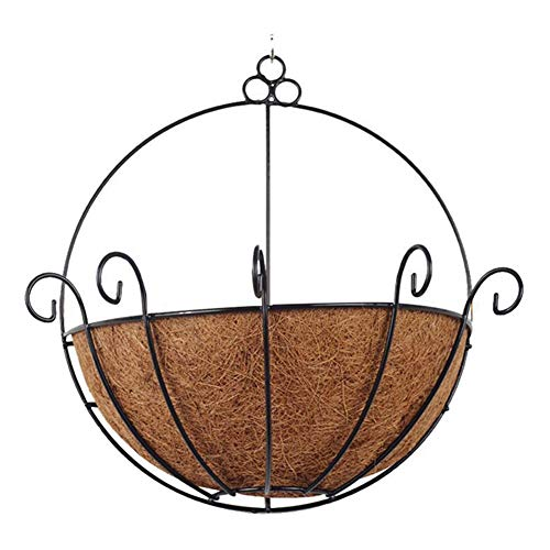 Outdoor Patio Planters (Amneria Half Round Hanging Planter Basket, with Wire Plant Holder with Chain Porch Decor Flower Pots Wall Hanging Planting Pot for Home, Outdoor, Coconut Garden Watering, Patio, Decor)