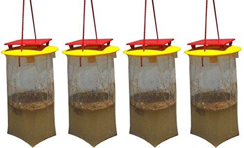Redtop Flycatchers Taille compacte Twin Value Pack (2 Pièges Inclus) - 100% Non Toxique à Mouches extérieur jetable - Conçu pour Attirer Les Egg-Laying Femelles 2