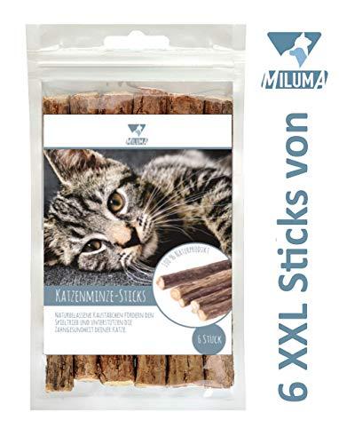 Miluma 6 x Katzenminze Sticks für Katzen | natürliche Zahnpflege| 6 extra Dicke und hochwertige Kausticks | Katzenspielzeug gegen Mundgeruch & Zahnstein | 100{b39a1b26f9d4d02353aa5b4635fad062438b782ae4ccea2939e27147e6232dbe} Natur - Matatabi
