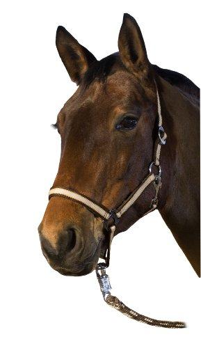 USG Halfter, beige/orange/braun, Pony