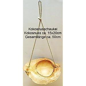 Kokosnuss Schaukel ca. 15x20x50cm 100% Naturmaterialien/ Papageien/ Sittiche/ Nager/ Katzen/ Spielzeug/ Vogelschaukel/ Vogelspielzeug/ Voilieren/ Freigehege/ Freisitze/ Kratzbaum