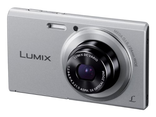 Panasonic Lumix DMC-FH10 16.1 MP Point and Shoot Camera(Silver) with 8x Optical Zoom