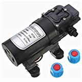 Questquo Dc 24V 60W 5L/Min Motor High Pressure Micro Diaphragm Water Self Priming Pump