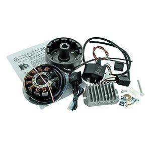 Elektronische Zündung orig. Vape ETZ 125 150 250 251 301, 180W, für MZ