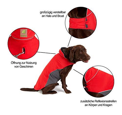 Hundemantel Warm, Innen mit Fleece, Hochwertiges Material, Atmungsaktiv und Wasserabweisend Wintermantel/Winterjacke (Größe 12) - 2