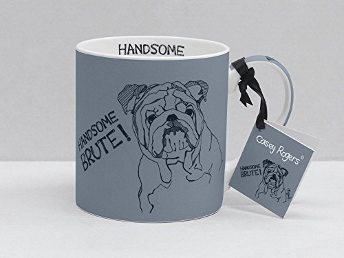 casey-rogers-mugs-handsome-brute