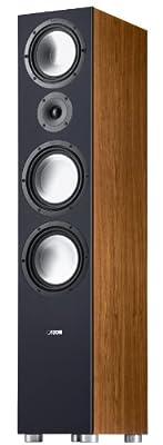 Canton GLE 496 coppia diffusori da pavimento NOCE al miglior prezzo su Polaris Audio Hi Fi