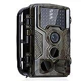 NINI Outdoor-Jagd Kamera, Feld Automatische Hot-HD-Kamera, Einbruchschutz-Überwachungskamera