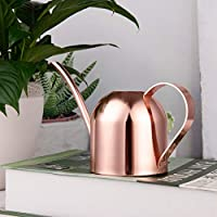 IMEEA Mini Watering Can Gold Indoor Stainless Steel Watering Pot for Kids House Desk Office Plants Bonsai (15oz/450ml)