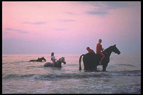 628038 Riding Horses In The Northsea Scandinavia A4 Photo Poster Print 10x8