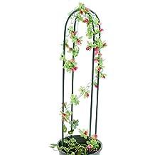 Support pour plantes grimpantes for Plantes grimpantes exterieur