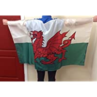 Best Dressed Wearable Welsh Wales Flag 5ft x 3ft 150cm x 90cm 2016 European Championship