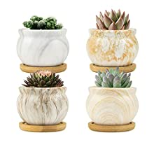 FairyLavie 8.5CM Modern Planter for Indoor Plants, Marbling Ceramic Succulent Pots Flower Pot with Bamboo Trays, Perfect for Home Office Decor and Unique Gift for Family Friends Colleague, Set of 4