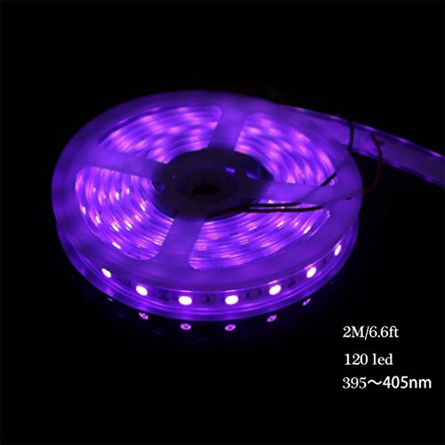 ffnw-ip67-waterproof-uv-blacklights-light-strip-fixture-2m-66ft-5050-smd-395nm405nm-dc-12v-60leds-m-