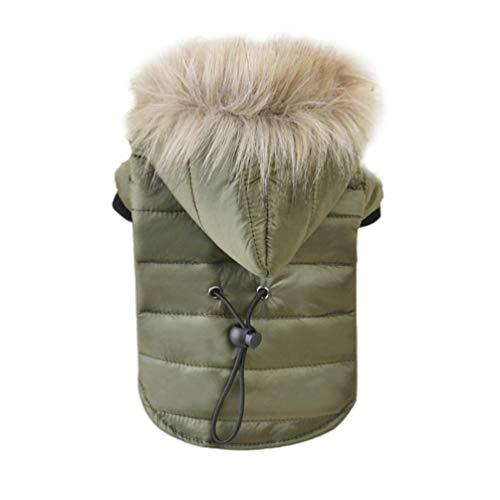 Hundekleidung Winterjacke Cute Chihuahua Kostüm für Haustiere Kleidung für kleine Hunde M?ntel