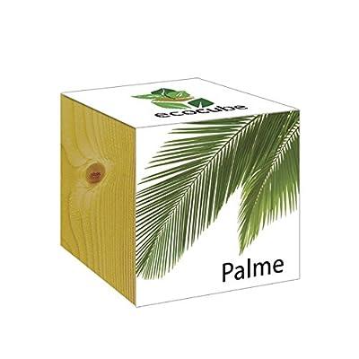 ecocube Holzwürfel - Palme von Inventive Trading auf Du und dein Garten
