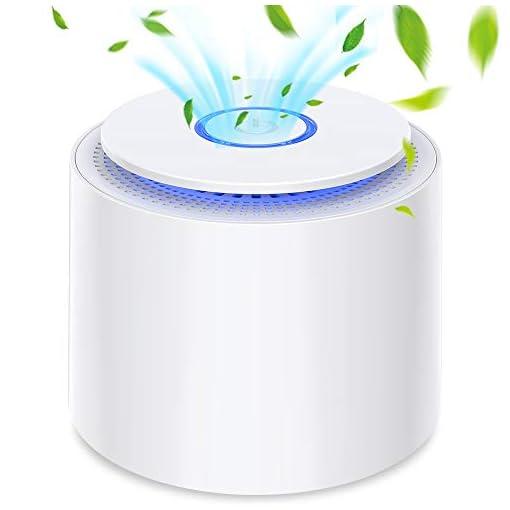 BOYON Purificatore d'aria Portatile con Filtro HEPA, USB Desktop Filtro Aria con Luce Notturna e Funzione di Aromaterapia, Rimuovere Polvere, Polline, Fumo, Odore, Peli di Animali Domestici, Bianco