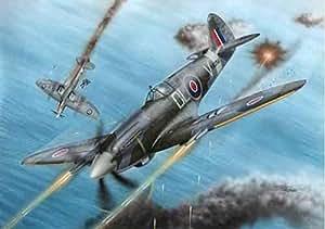 Special Hobby - Supermarine Spitfire F Mk.21 'No.91 Sq. RAF in WWII' - 72227