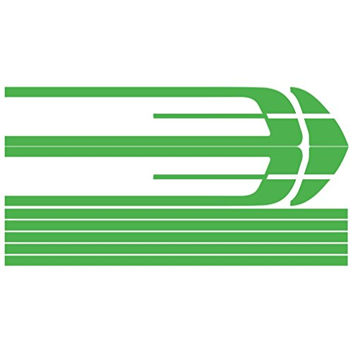 3017__LGRE Autoaufkleber Racing-Linien Aufkleber ( Light Green) (Quad-scheibenaufkleber)